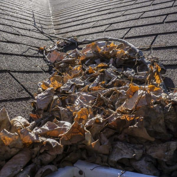 gutter cleaning bramley